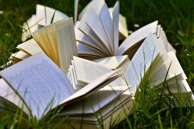 Kieltä & kirjallisuutta